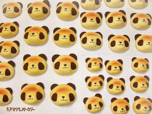 パンちゃん増産(からのサワガニさんご紹介)
